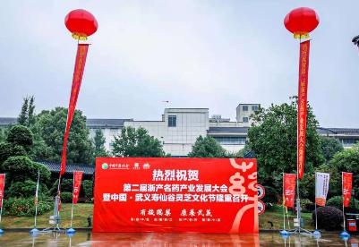 """第二届""""浙产名药""""产业发展大会于浙江武义召开"""