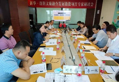 新华·洛阳文旅融合发展指数通过专家评审