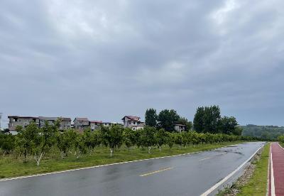 """中国铁建:""""F+B""""投融建模式助力乡村道路互联互通"""
